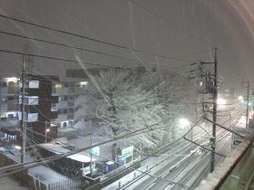 2012.01.24.yuki.小金井.jpg
