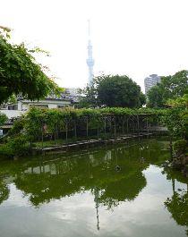 2012.07.04.スカイツリー4.jpg